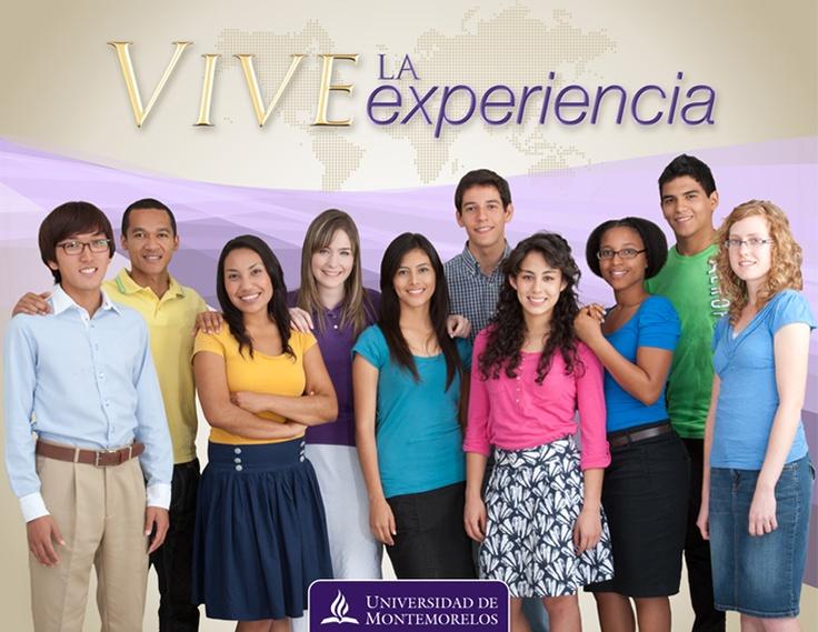 Vive La Experiencia